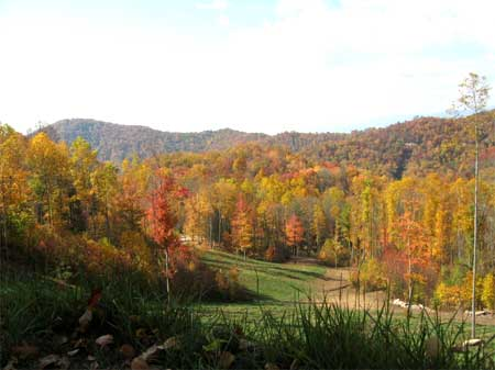 For Sale By Owner  North Carolina Mountain View Acreage  Near