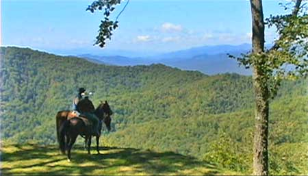 Horse Property For Sale Near Asheville Nc