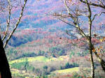 Cherokee County NC Mountain Top Long Range View Acreage for sale.