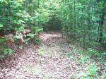 Private Wooded Mountain View Acreage with Stream for sale.