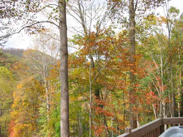Western north carolina romantic honeymoon cabin with hot for White rock mountain cabins